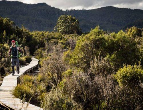 Polainas de montaña: descubre cómo elegir las tuyas